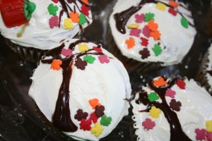 seeds and cupcakes 007